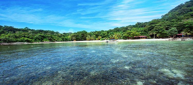 岳阳天鹅岛生态度假园
