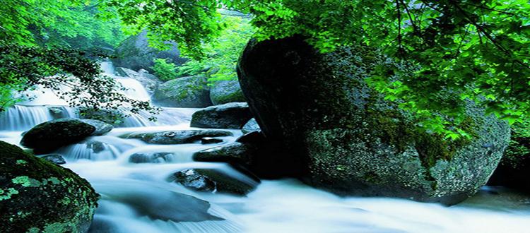 浏阳大围山国家森林公园